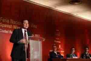 fenavin castilla la mancha pib 3 300x200 - Plan estratégico del sector vitivinícola para aumentar 4 puntos el PIB de Castilla-La Mancha