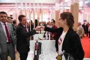 fenavin castilla la mancha pib 4 300x200 - Plan estratégico del sector vitivinícola para aumentar 4 puntos el PIB de Castilla-La Mancha