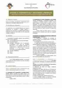 ayudas cooperativas y sociedades laborales 212x300 - Convocadas las ayudas del programa de promoción de cooperativas y sociedades laborales en CLM