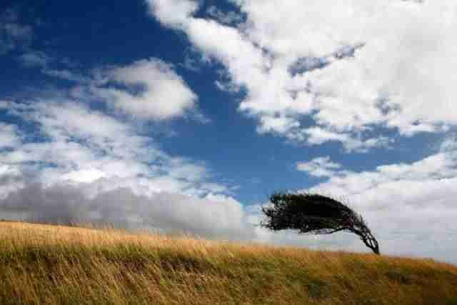 Fuertes vientos. Imagen de archivo