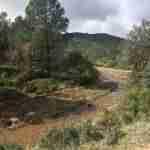 sierra madridejos arroyos 4 150x150 - Sierra de Madridejos llena de vida y agua