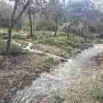 sierra madridejos arroyos 3 150x150 - Sierra de Madridejos llena de vida y agua
