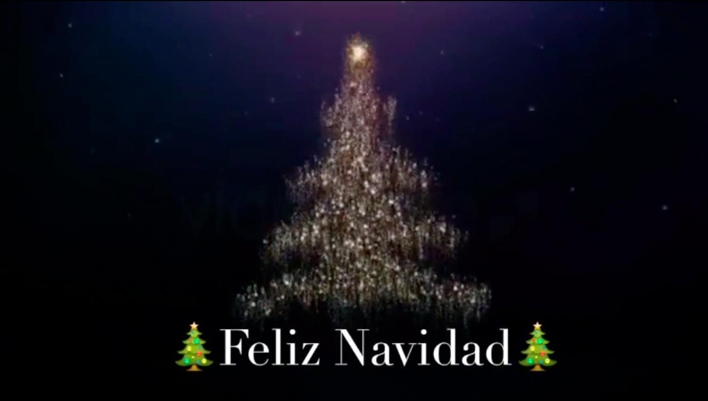 Videos De Felicitaciones De Navidad Graciosas.Descargar Videos De La Feliz Navidad Para Enviar Por Whatsapp