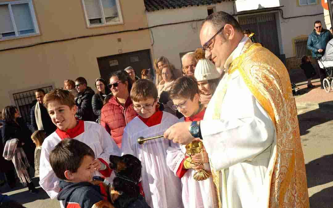 Gran participación en las fiestas de San Antón de Quintanar de la Orden 3