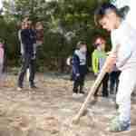 Los niños y niñas de la Pequeteca y de la Ludoteca plantan cerca de un centenar de encinas 1