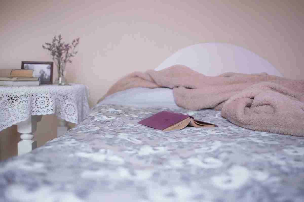 Plantas ideales para decorar tu dormitorio con mucha belleza 3