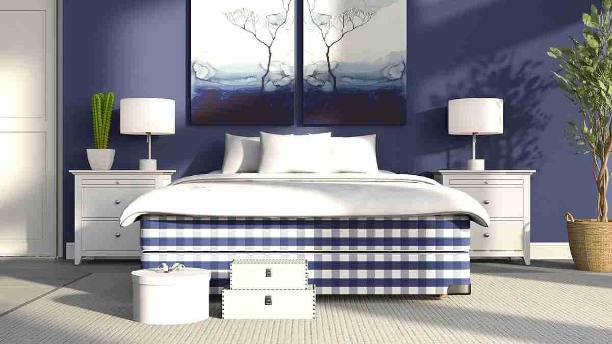 Plantas ideales para decorar tu dormitorio con mucha belleza 4