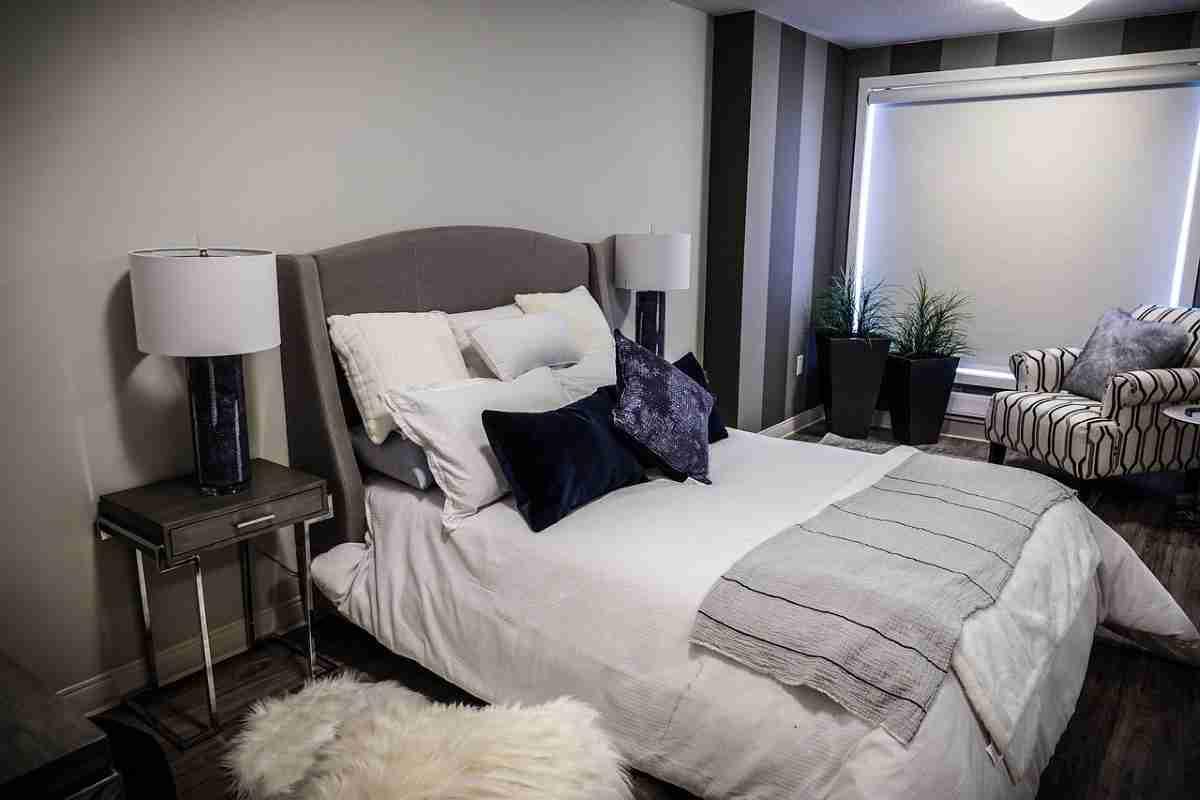Plantas ideales para decorar tu dormitorio con mucha belleza 2