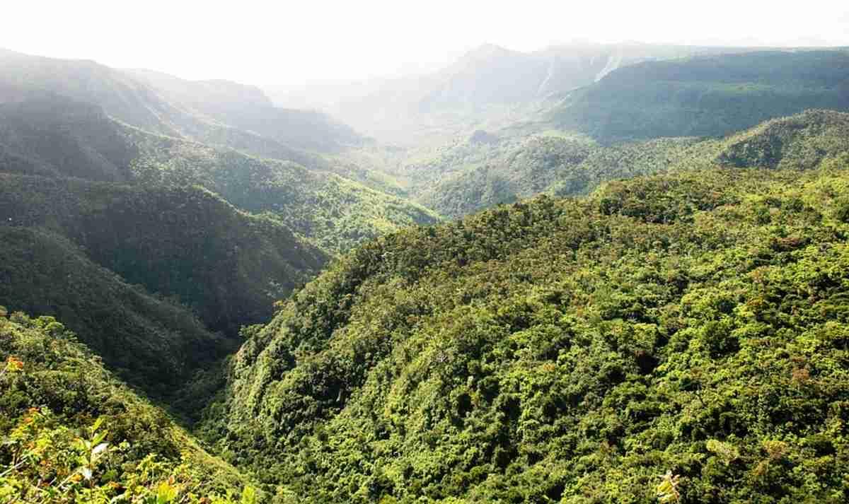 Isla de Mauricio el paraíso en el Océano Índico para tu viaje de verano 4