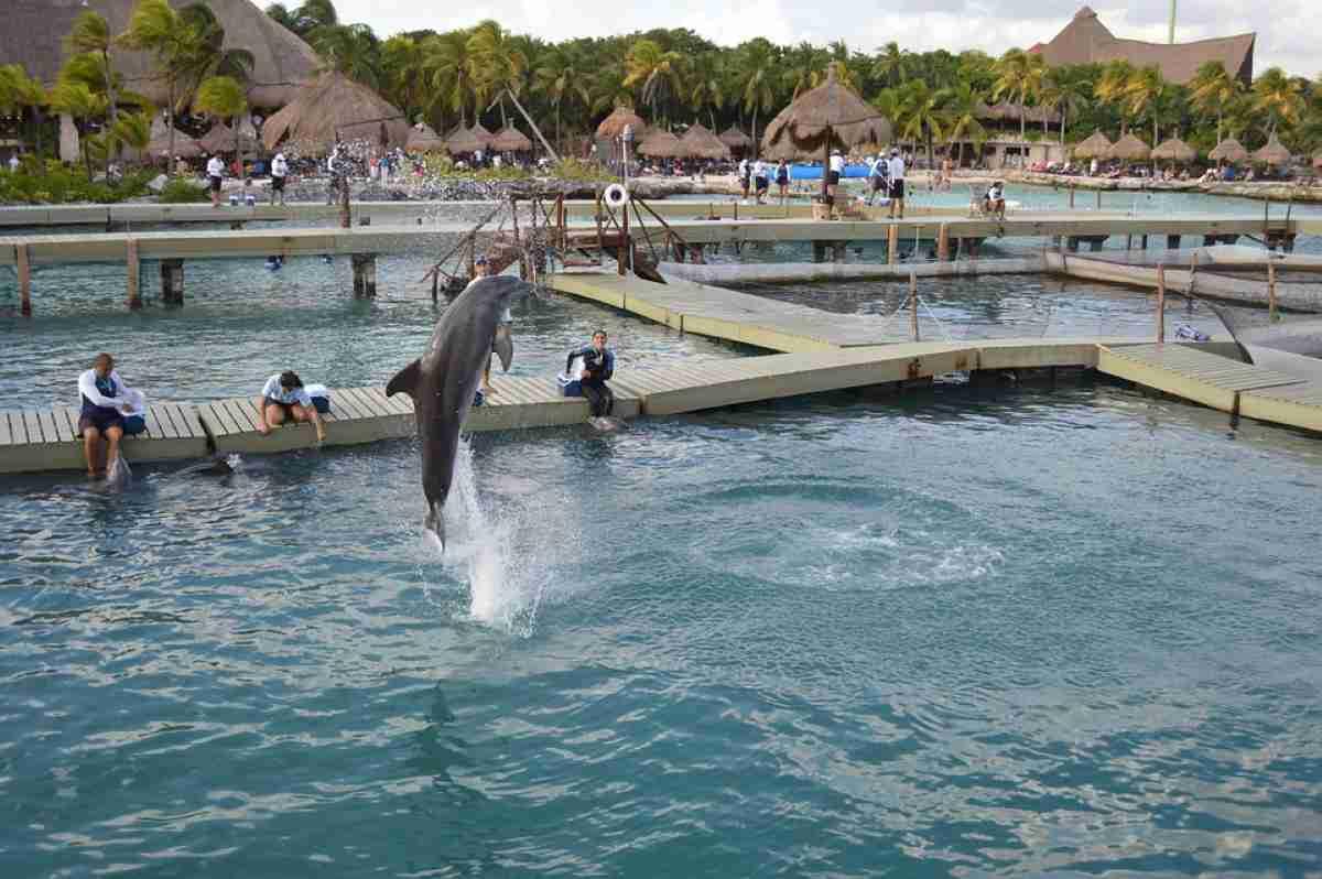 Parque temático Xcaret en la Rivera Maya para tus vacaciones 5