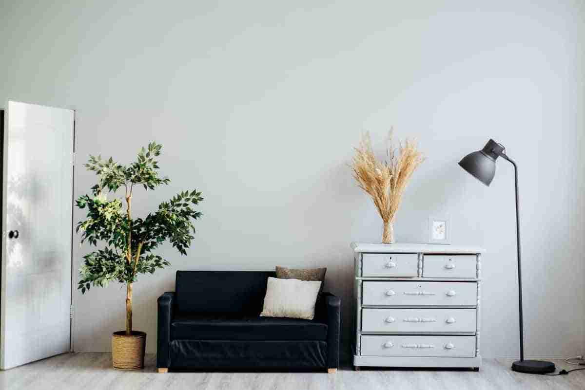 limpiar paredes color blanco paso a paso