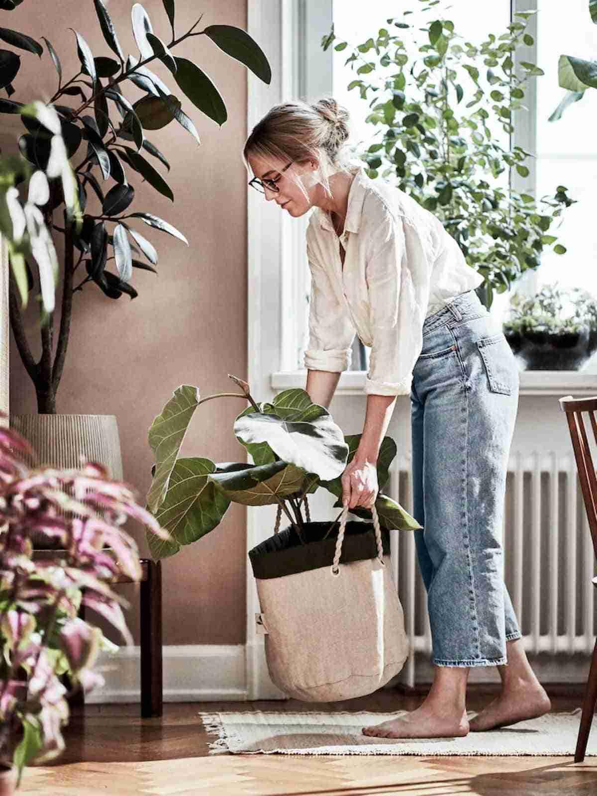 jardineria urbana con botanisk de ikea