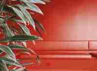 tonalidades del color rojo