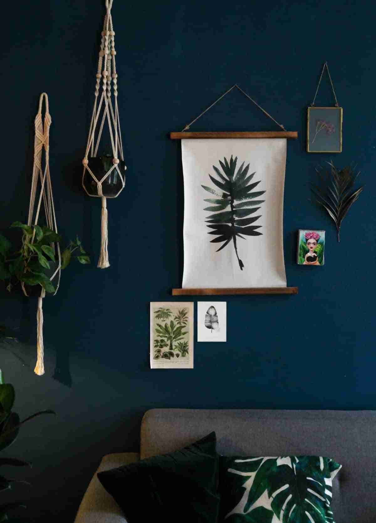 limpiar las hojas de plantas de interior