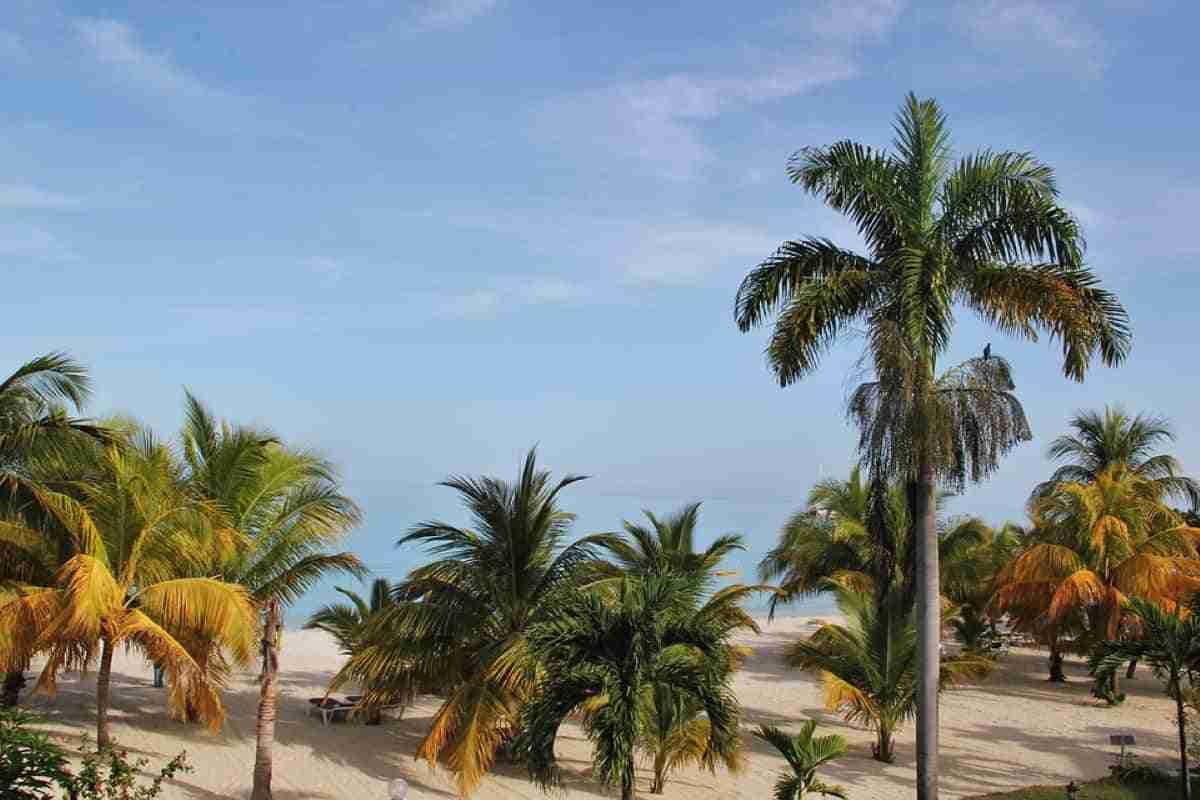 paraíso en jamaica