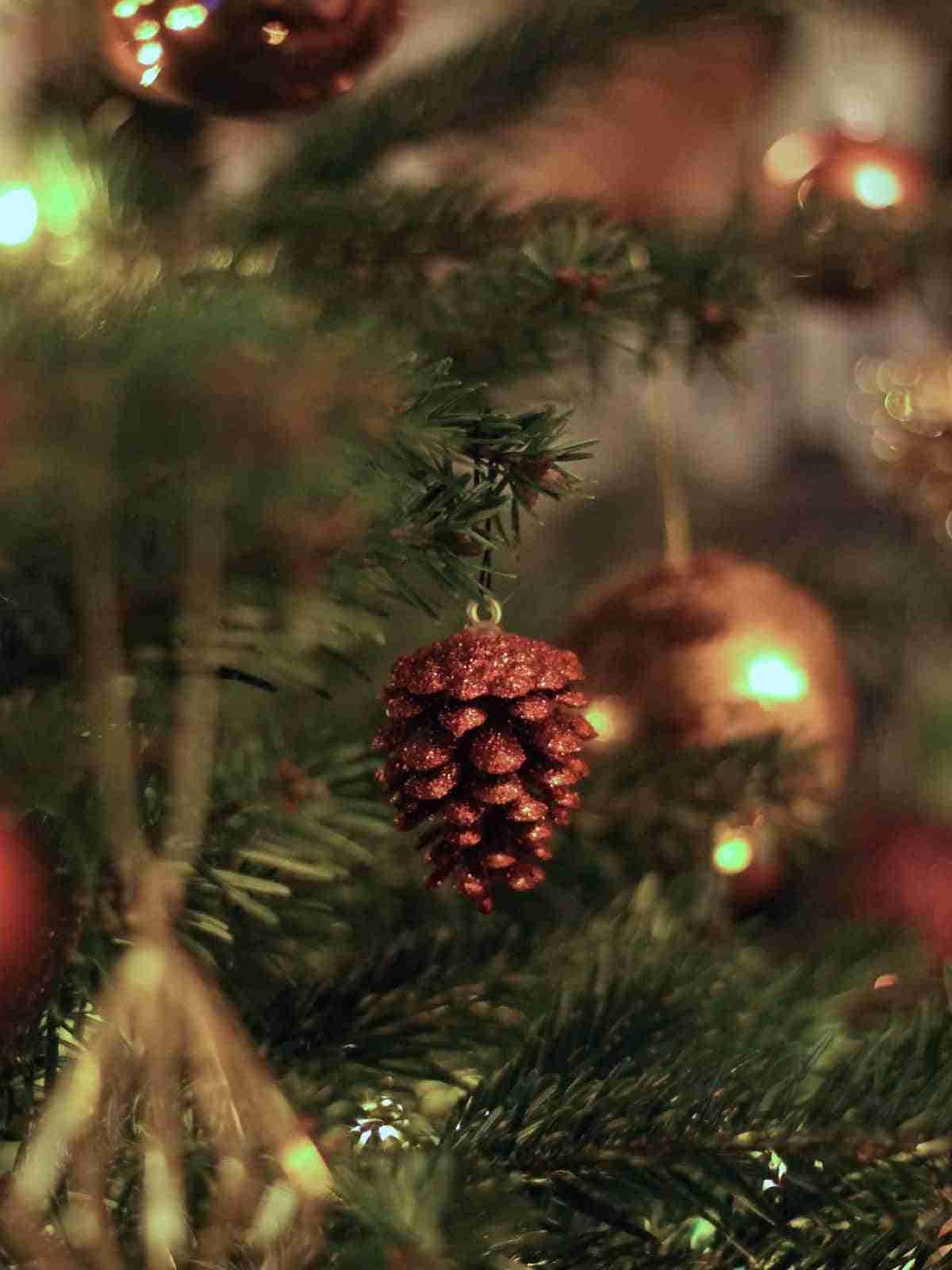 decoraciones con pinones