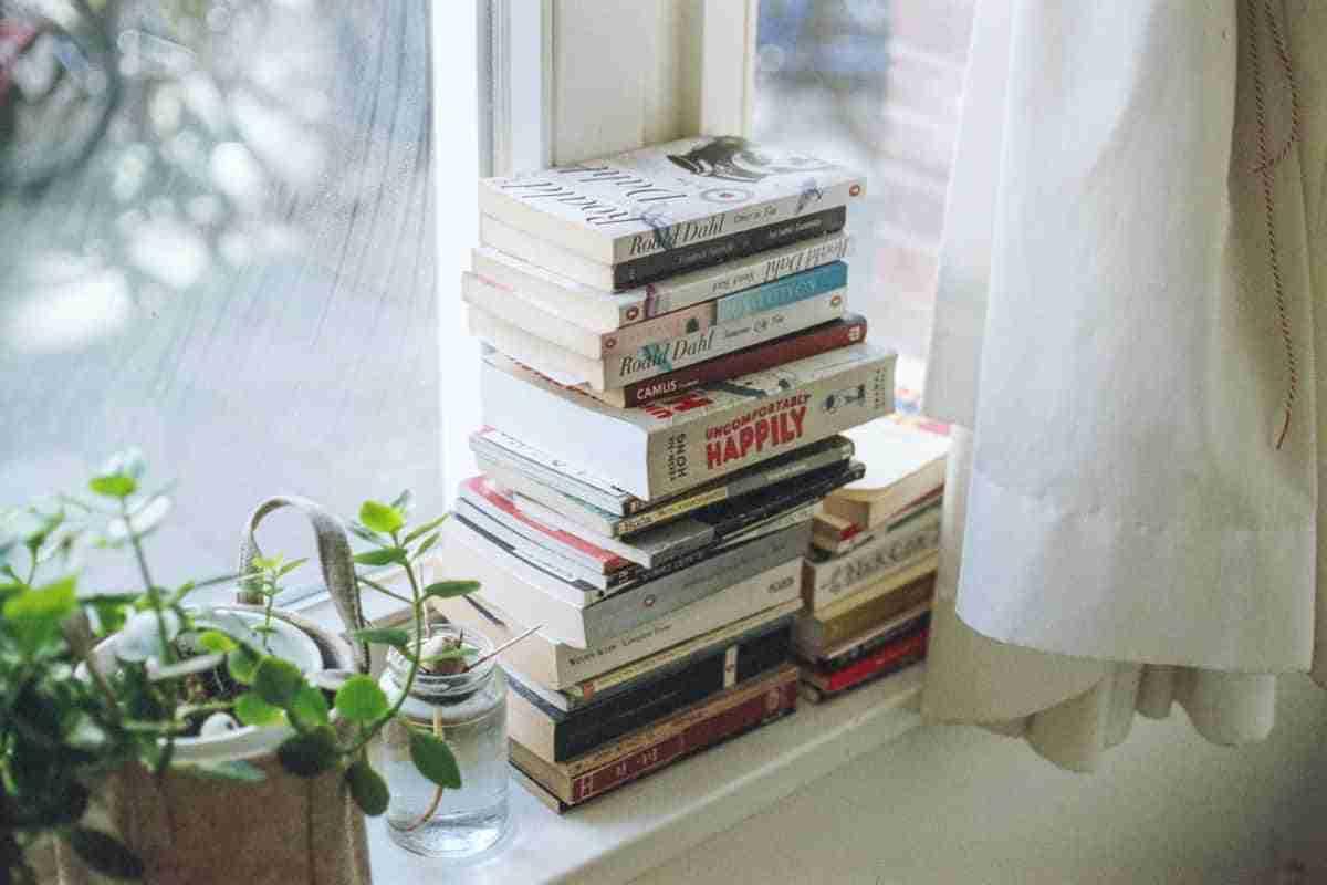 libros que decoran una ventana
