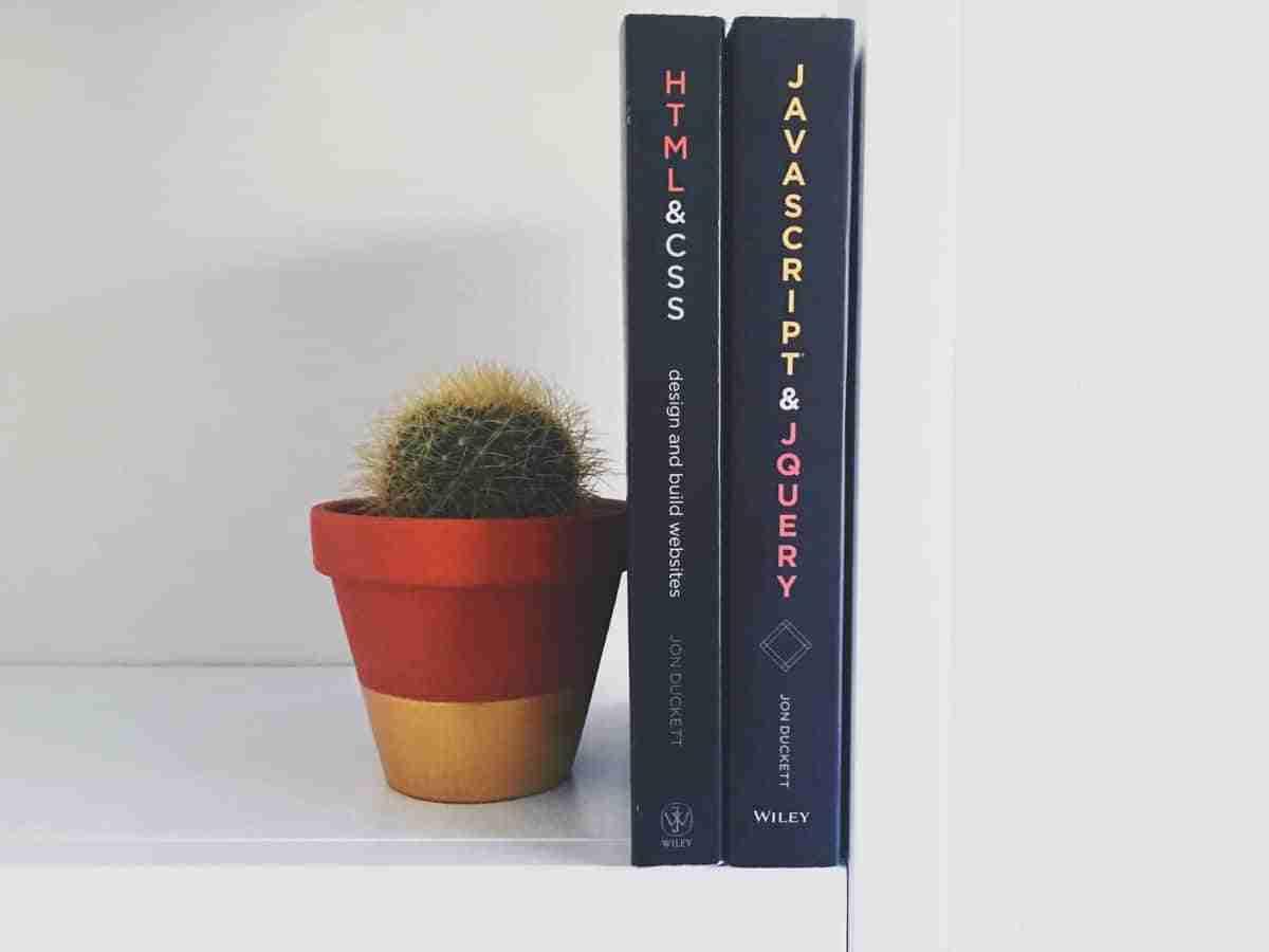 libros y cactus