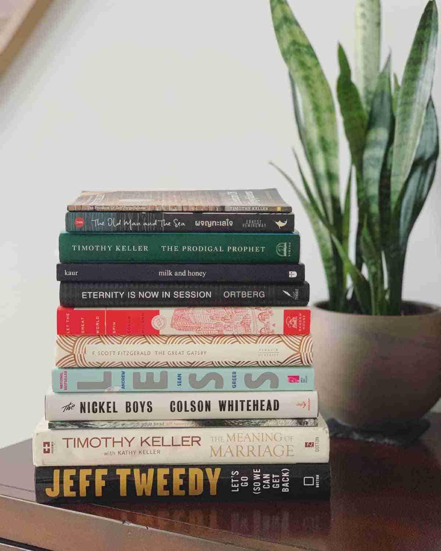libros y sansevieria
