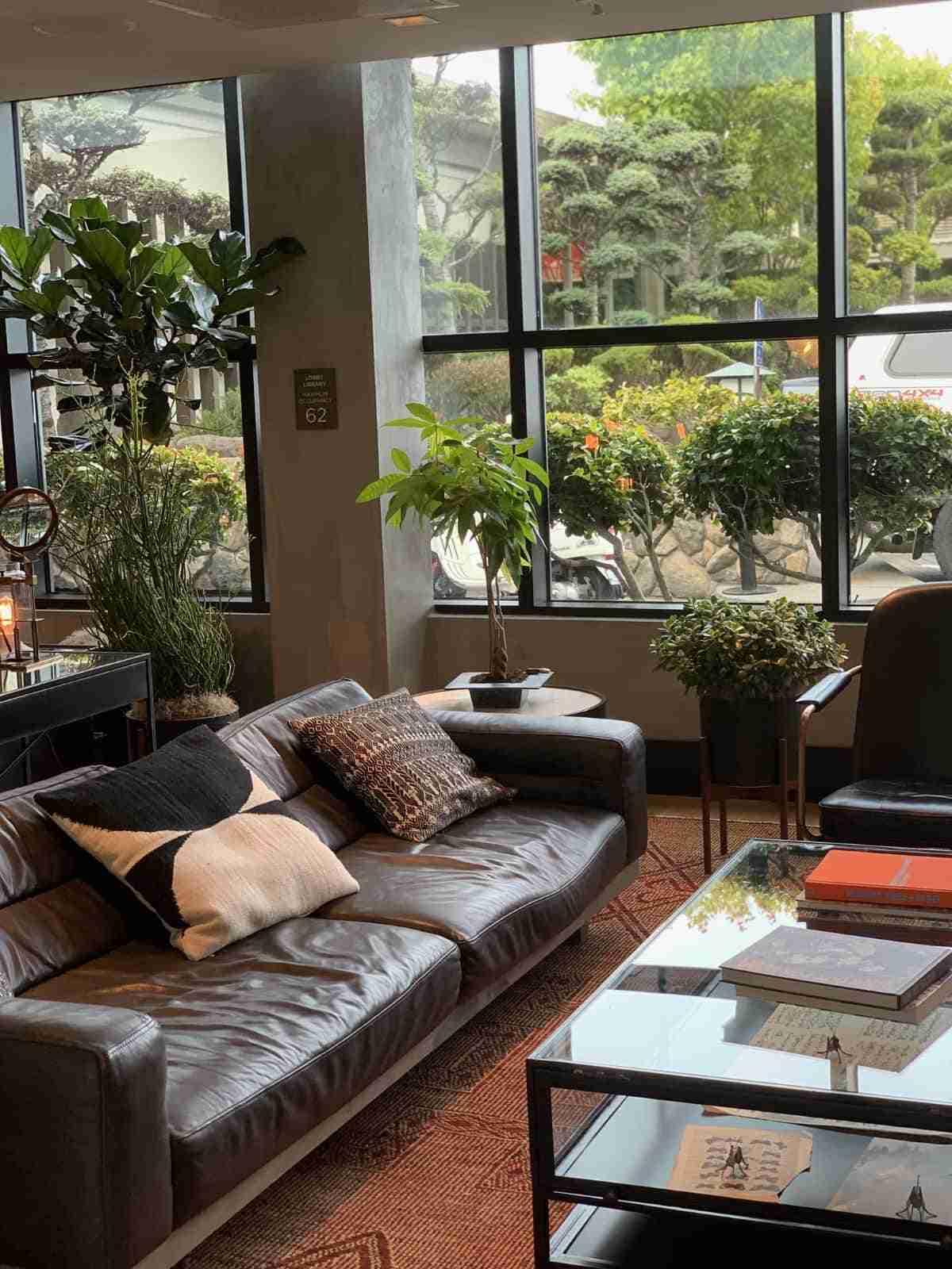 salon con jardin interior