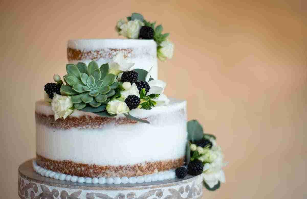 pasteles para bodas con suculentas