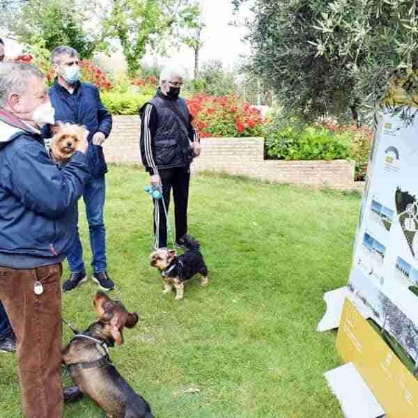 Actuación en el parque de La Rincona de mejora de espacios de convivencia con fondos FEDER