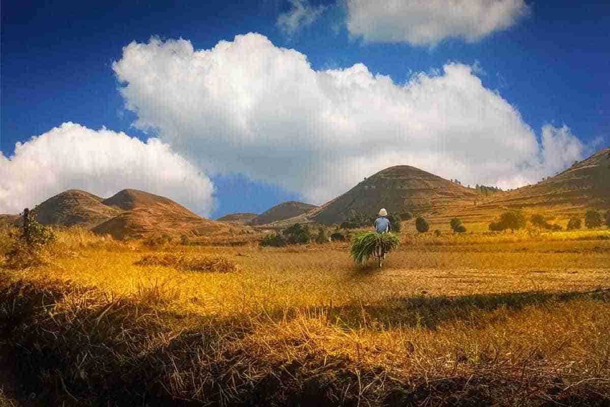 paisaje de madagascar