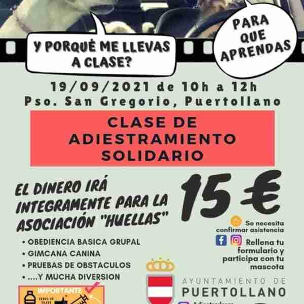 """Clase solidaria de adiestramiento canino de la protectora """"Huellas"""" este domingo en Puertollano"""
