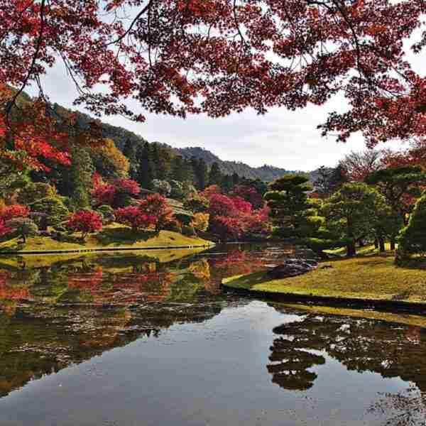 Kioto la ciudad de los 2000 templos en Japón destino turístico fascinante