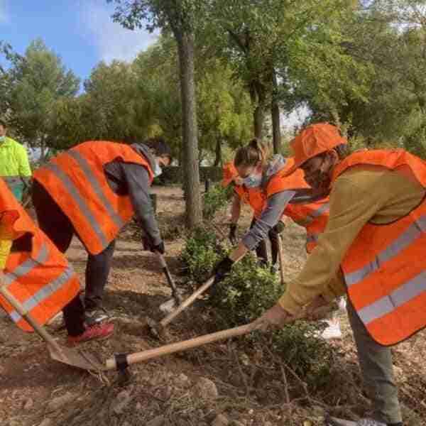 Jornada de plantación popular y limpieza en el Corredor Verde de Puertollano